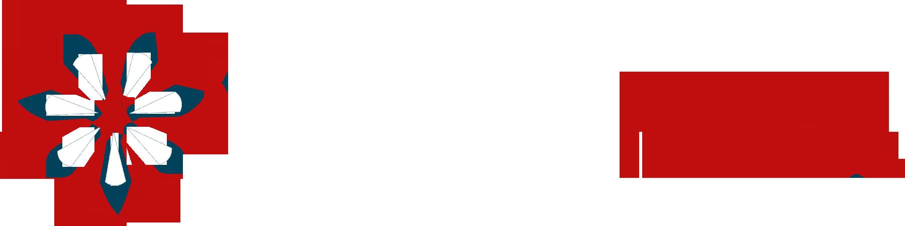 Profit MBA logo white text